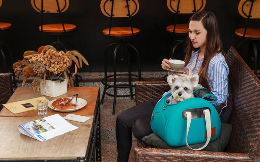 Dog Travel Bag