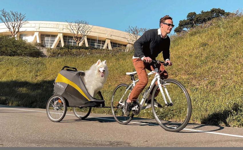 Hercules Heavy Duty Dog Trailer Stroller
